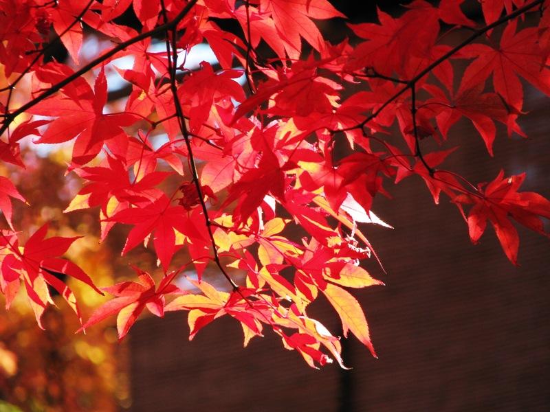 箱根美術館で