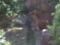 杉幸園  (サンコウエン)