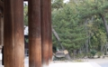 金堂 円柱