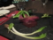 鴨胸肉のロティ エビス風味 フランボワーズの香り