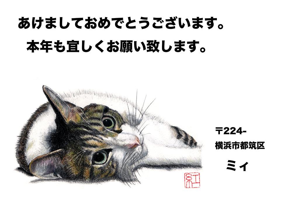 f:id:miemieization:20190101174031j:plain