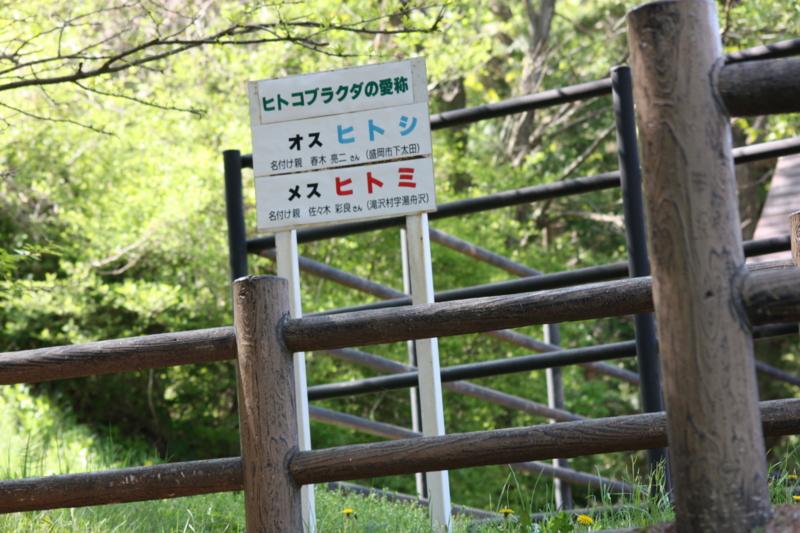 f:id:mifasorashido:20120528224527j:image