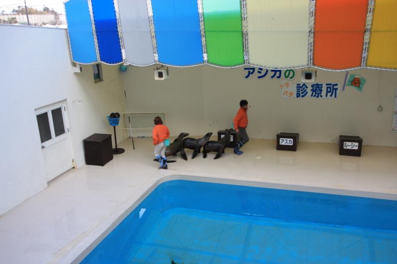 f:id:mifasorashido:20130311225633j:image
