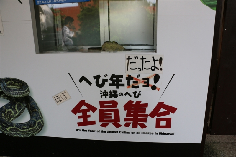 f:id:mifasorashido:20140819225433j:image