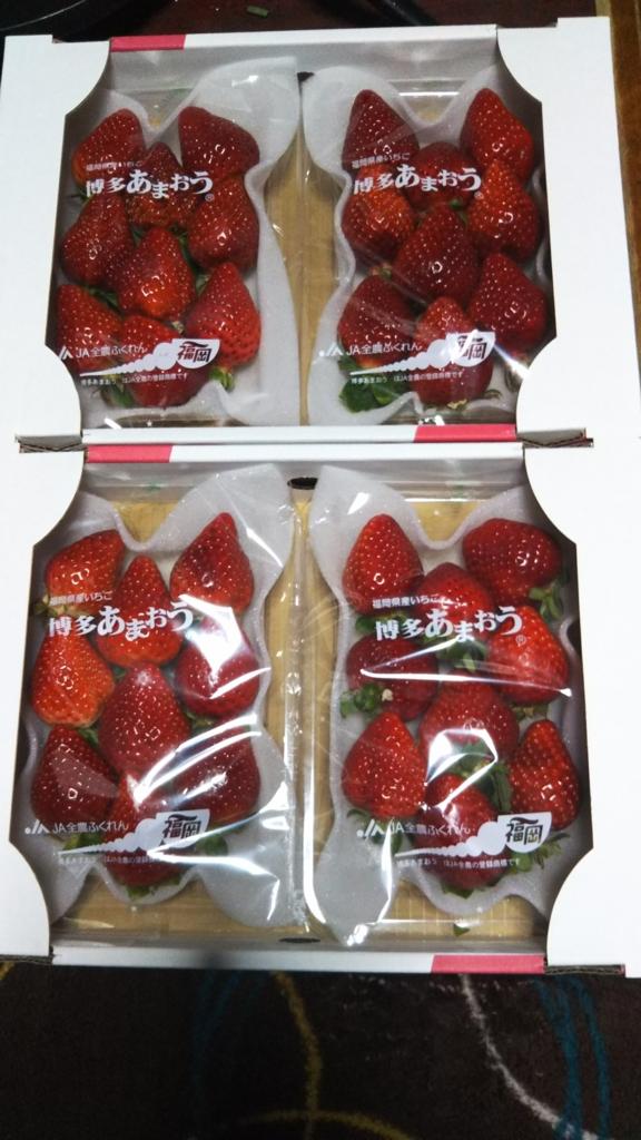 f:id:mihiro-kenshowlife:20170219183913j:plain