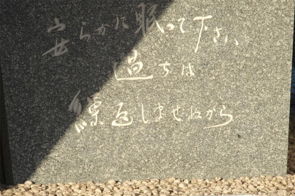 f:id:miho-tachikawa:20161205113418j:image