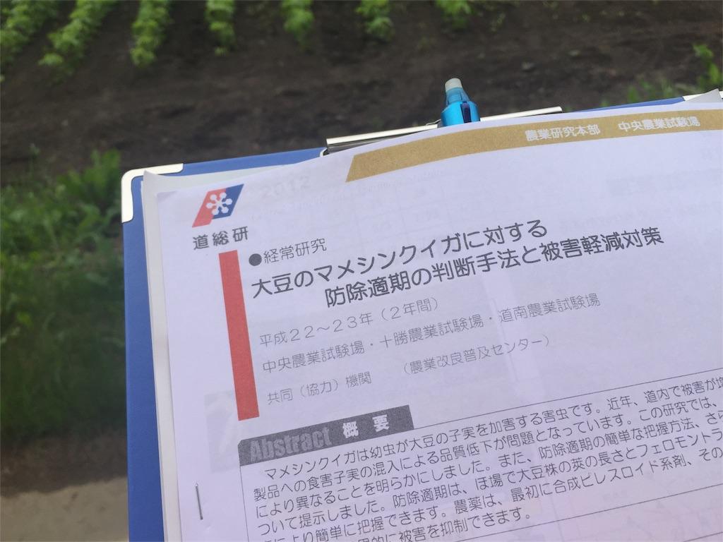 f:id:miho-tachikawa:20180706235212j:image