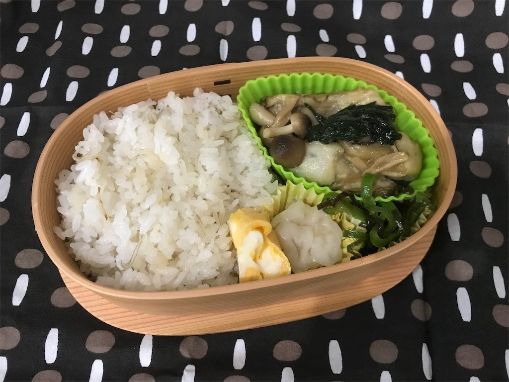 f:id:mihoboshi:20190304073828j:image