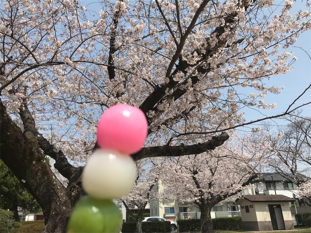 f:id:mihoboshi:20190407220134j:image