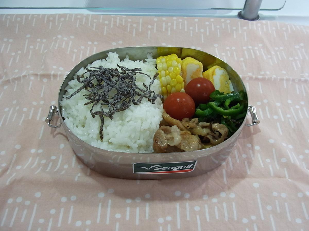 f:id:mihoboshi:20190621062646j:plain