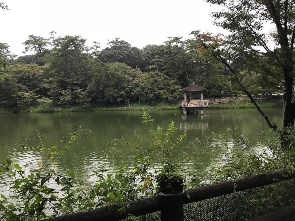 f:id:mihoboshi:20190918221141j:image