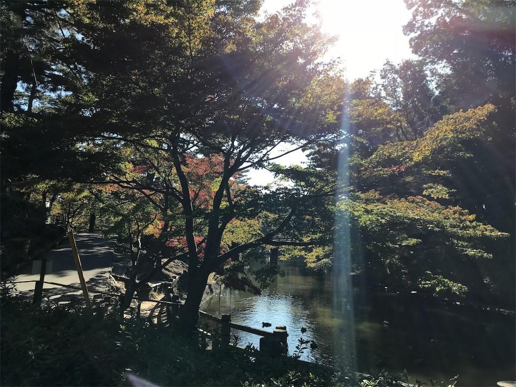 f:id:mihoboshi:20191110214653j:image