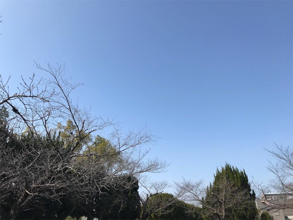 f:id:mihoboshi:20200209164921j:image