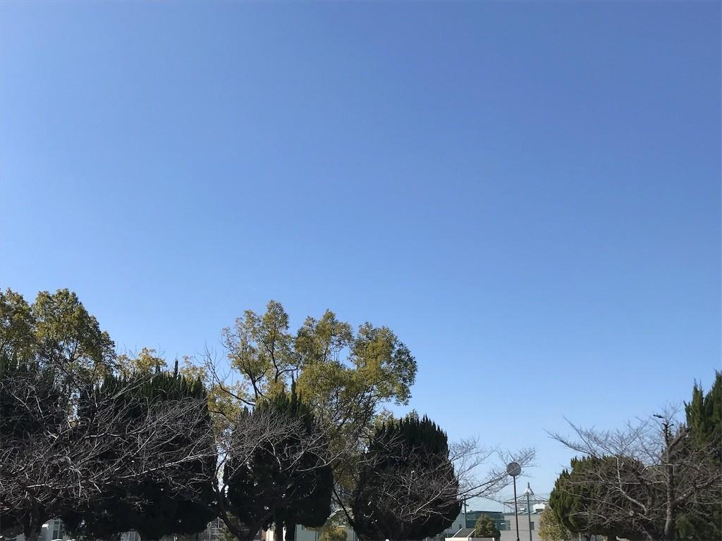 f:id:mihoboshi:20200224220509j:image