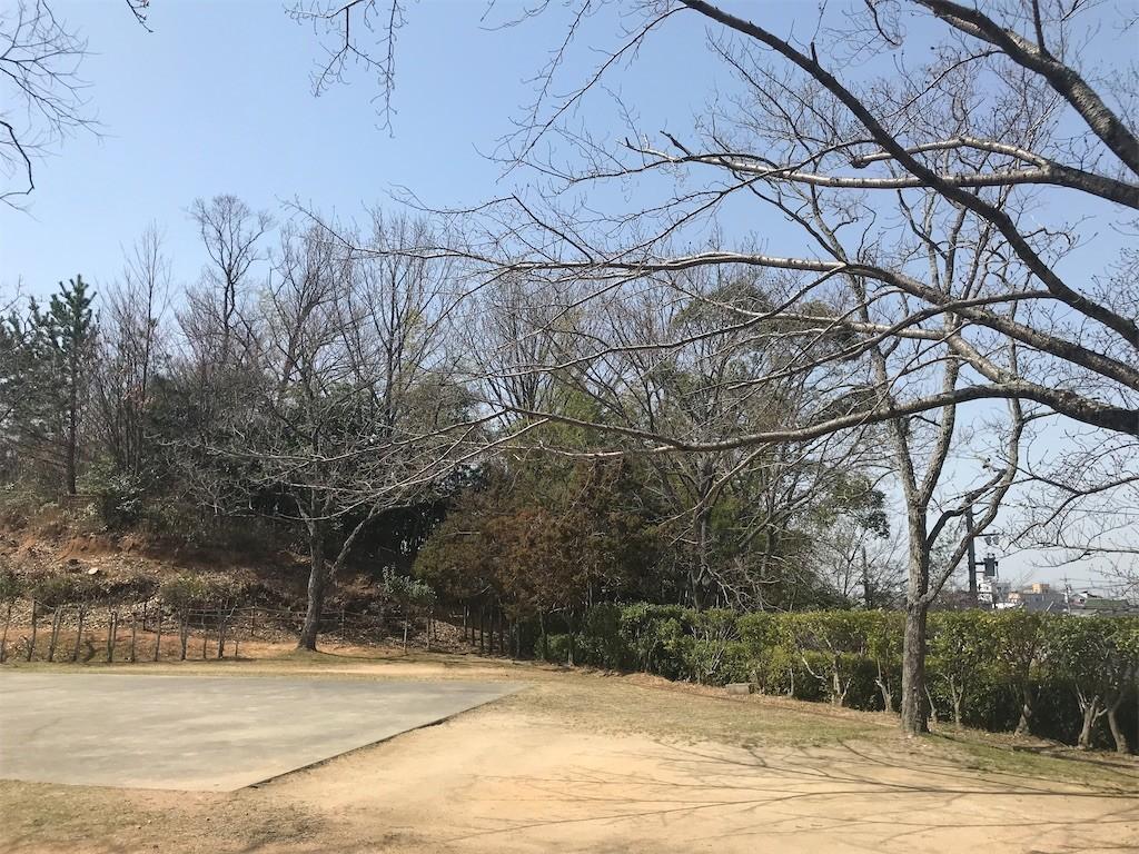f:id:mihoboshi:20200321215517j:image