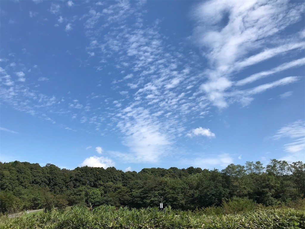 f:id:mihoboshi:20200919200408j:image