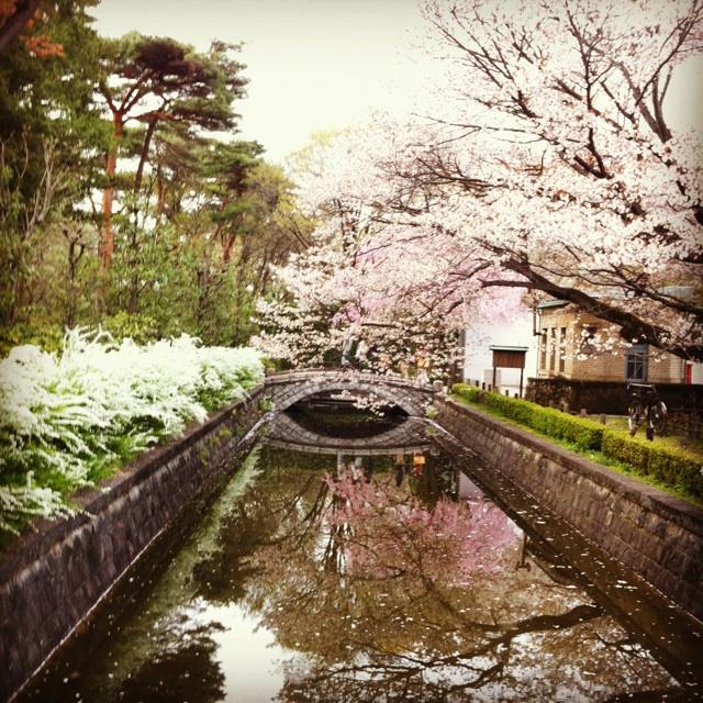 f:id:mihocomiho:20120417202458j:image