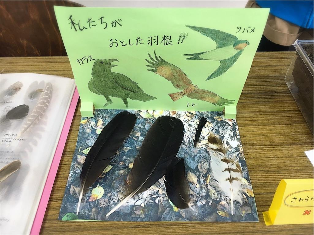 f:id:mihocomiho:20161009191600j:image