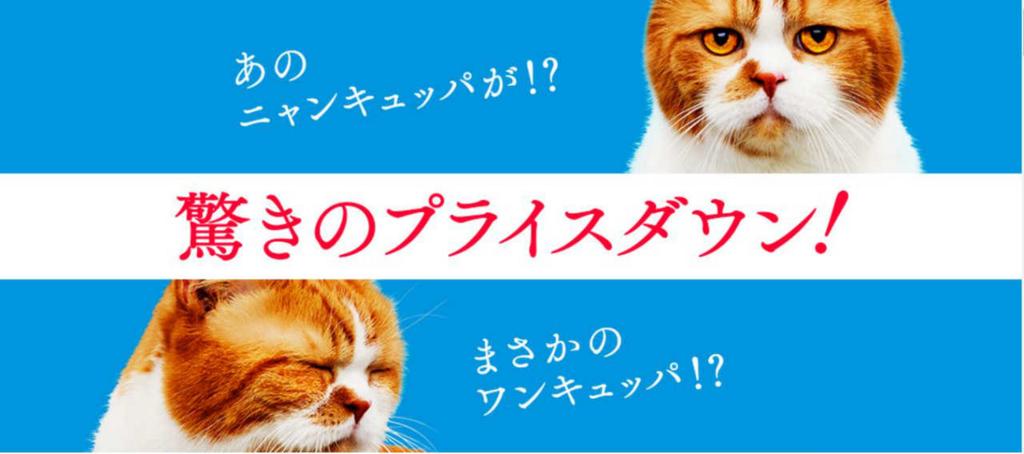 f:id:mihohime:20160602064623j:plain