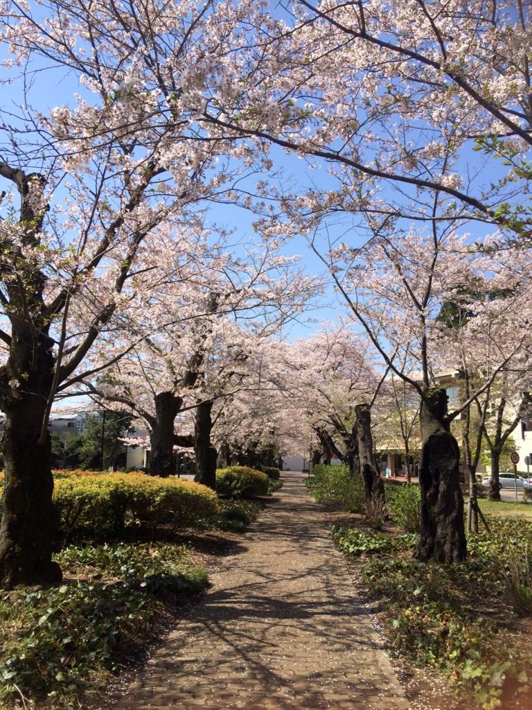 f:id:mihohiramoto:20170414174618j:plain