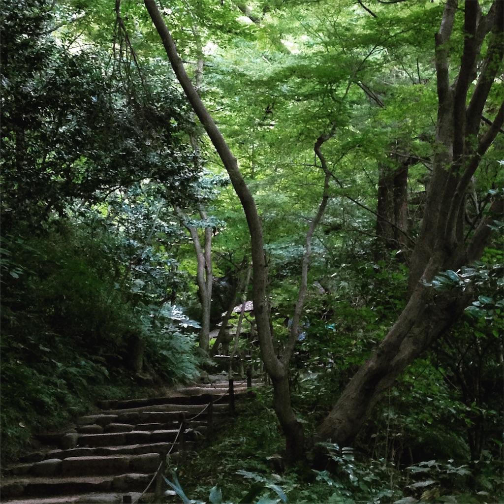 f:id:mihokoshimizu:20170117140622j:image