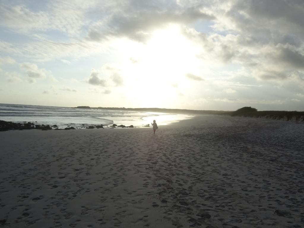 絶景ビーチ