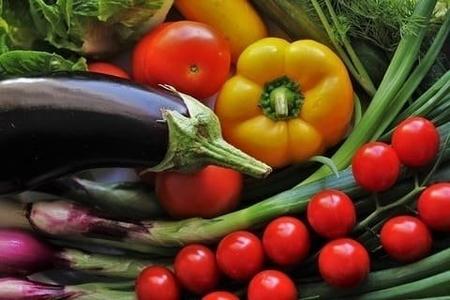 持続可能性栄養編、4つのチェックポイント