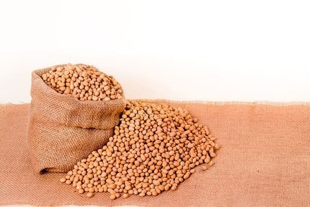 大豆ミートの魅力と3つのレシピ