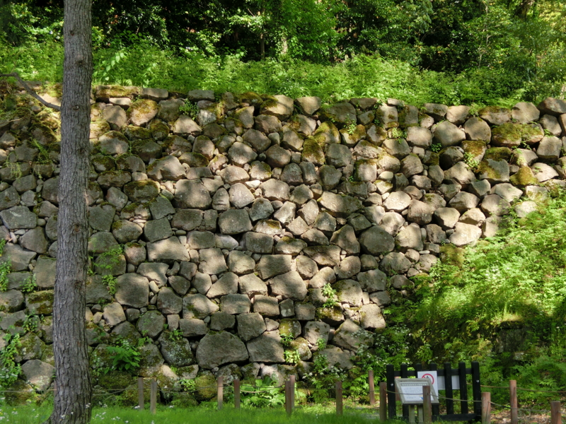 f:id:mijinyamatanishi:20130521232750j:image:w360:left