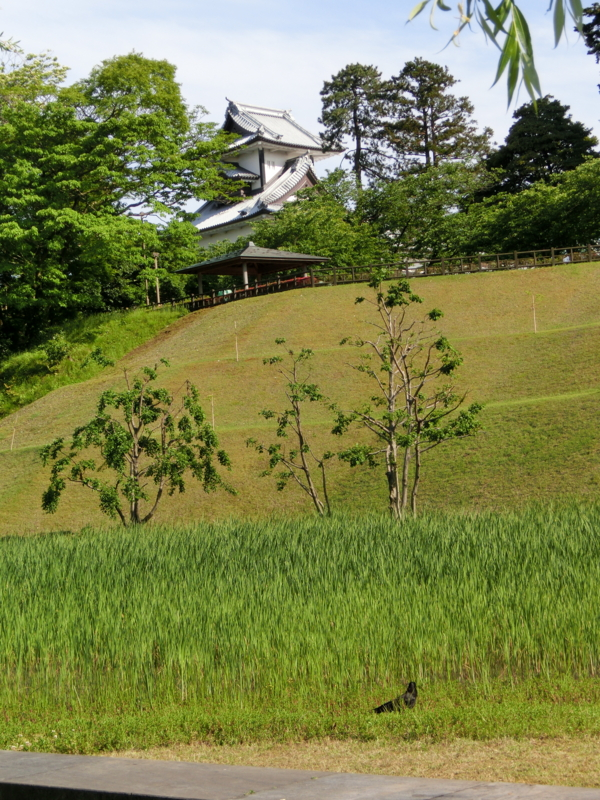 f:id:mijinyamatanishi:20130521232751j:image:w360:left
