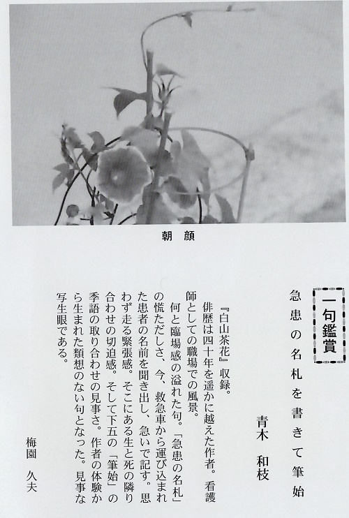 f:id:mijinyamatanishi:20200818142758j:plain