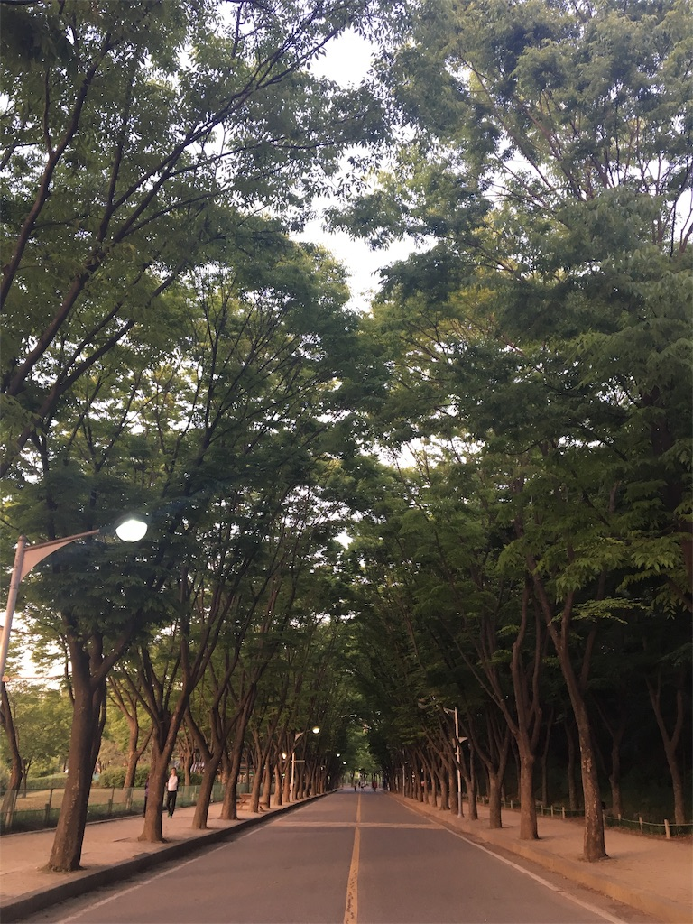 f:id:mijyukorea:20181226124206j:image