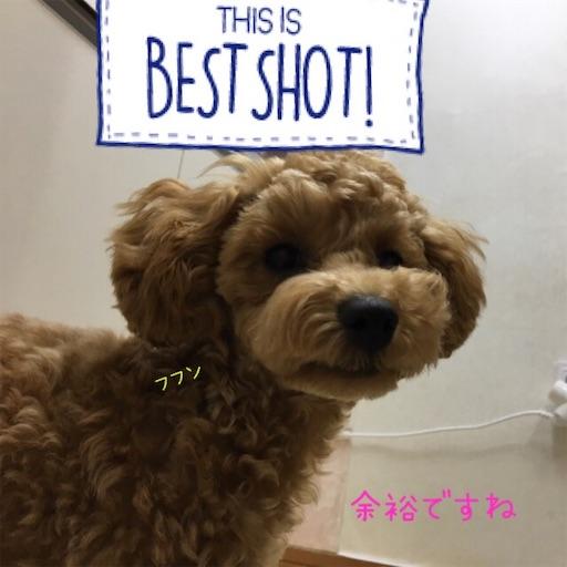 f:id:mijyukorea:20190526211033j:image