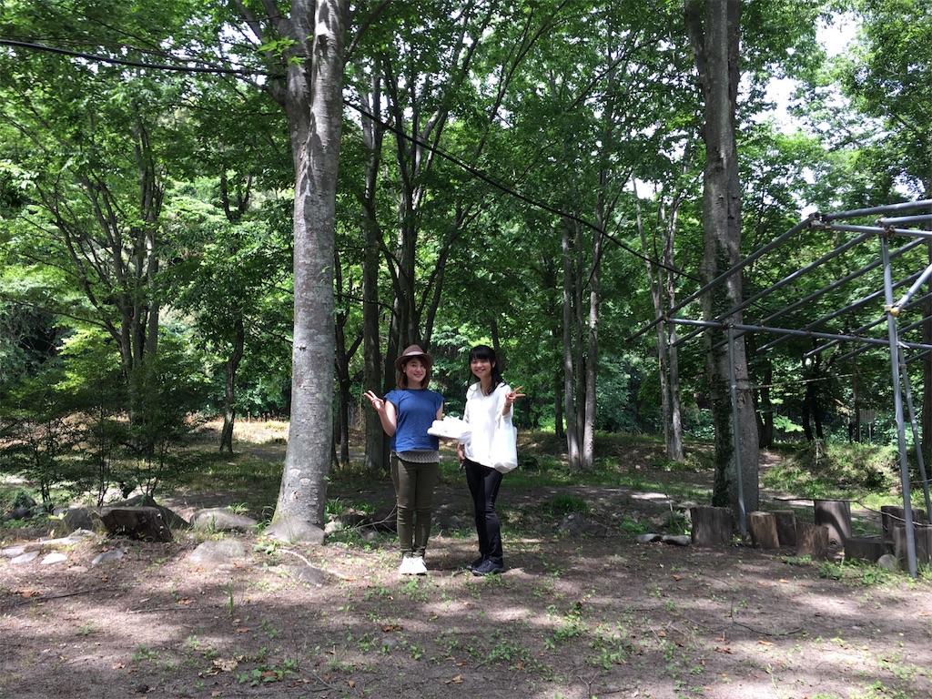 f:id:mika-oosakazuki:20170619234107j:image
