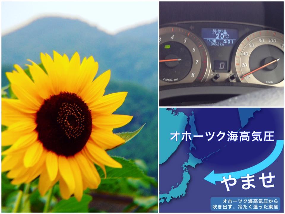 f:id:mika-shimosawa:20160728164308j:plain