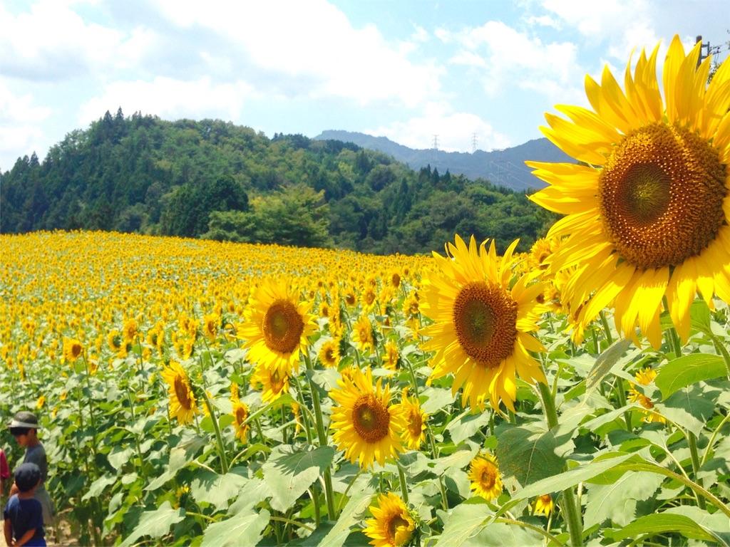 f:id:mika-shimosawa:20160814170510j:image