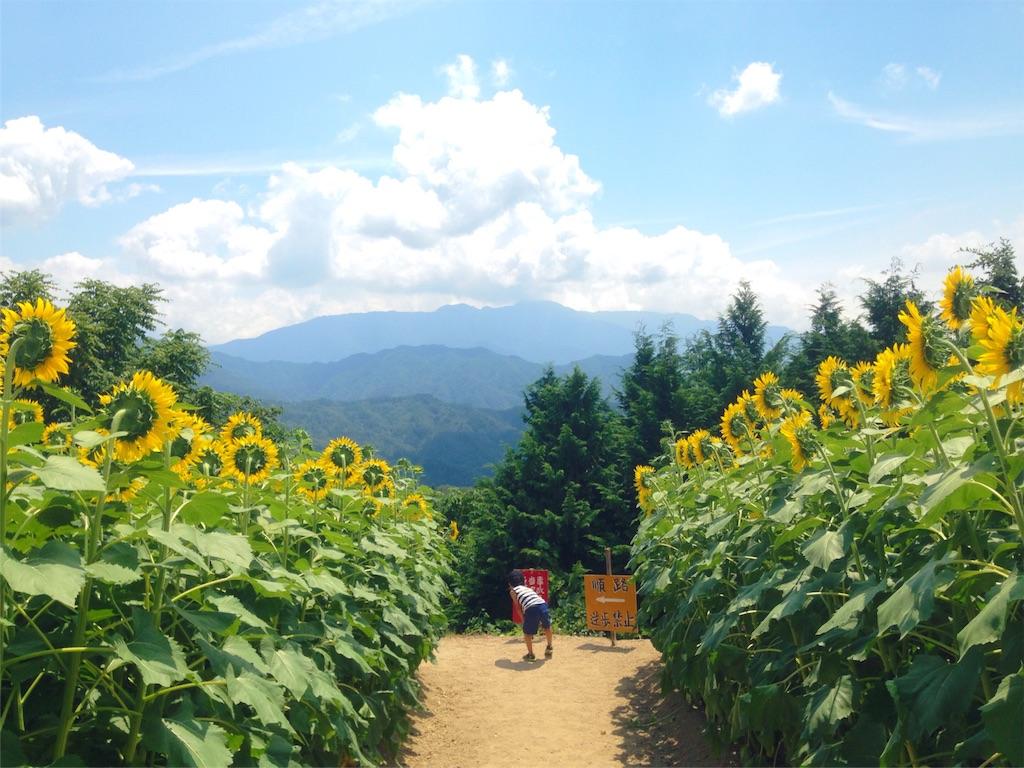 f:id:mika-shimosawa:20160814170710j:image