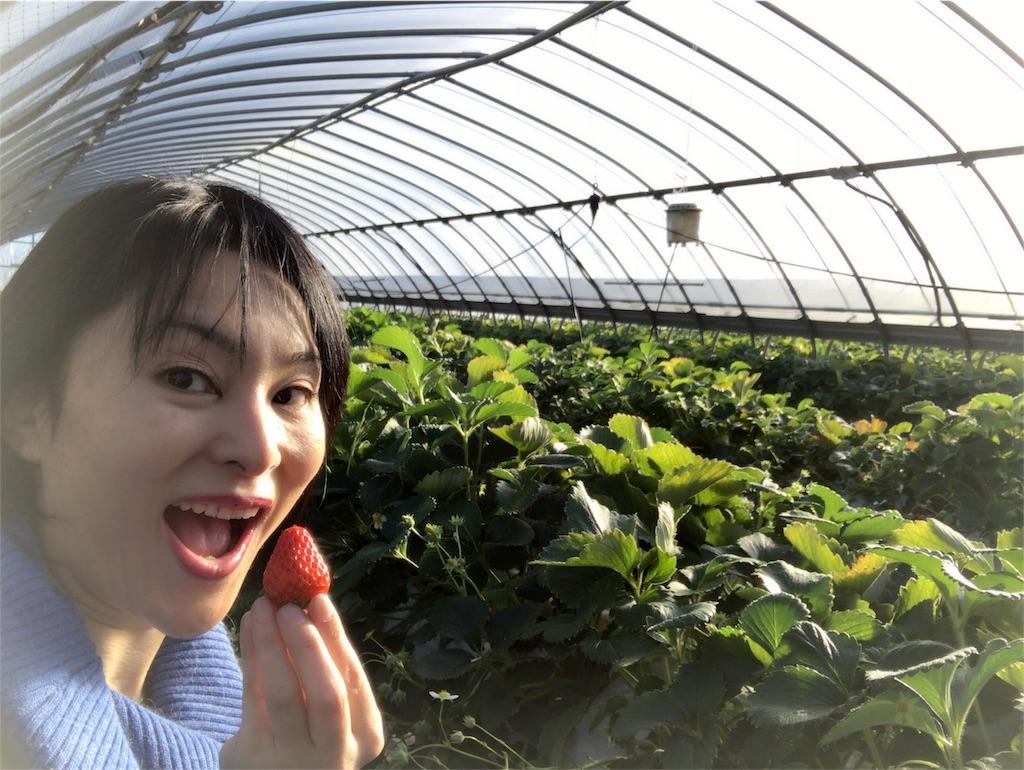 f:id:mika-shimosawa:20170222010959j:image