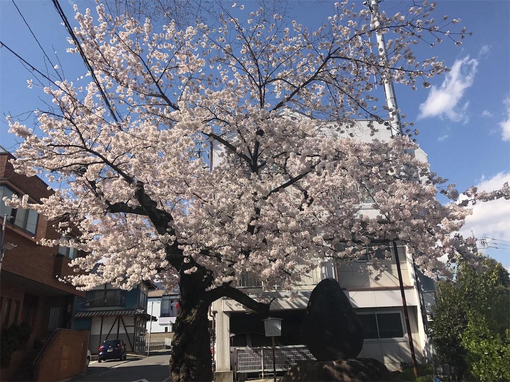 f:id:mika-shimosawa:20170418162538j:image