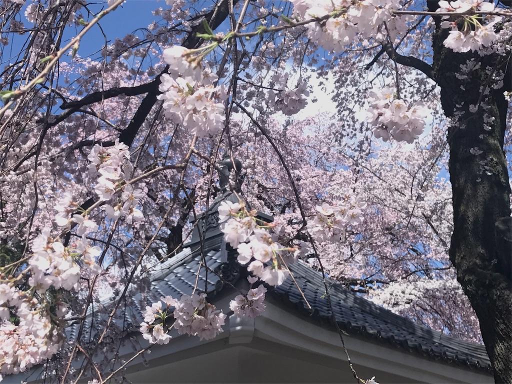 f:id:mika-shimosawa:20170418162948j:image
