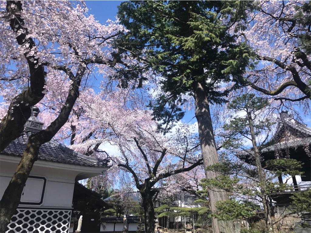 f:id:mika-shimosawa:20170418162959j:image