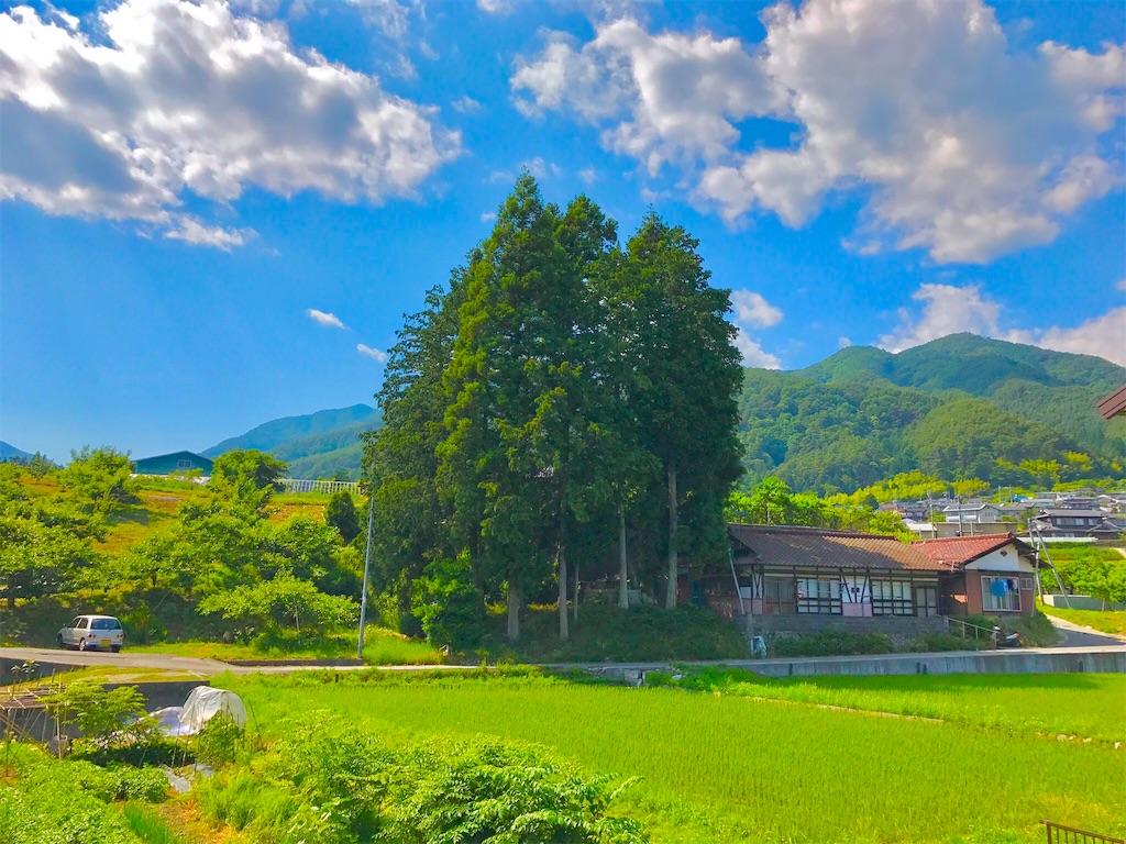 f:id:mika-shimosawa:20170624231542j:image