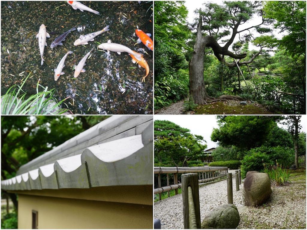 f:id:mika-shimosawa:20170705173902j:image