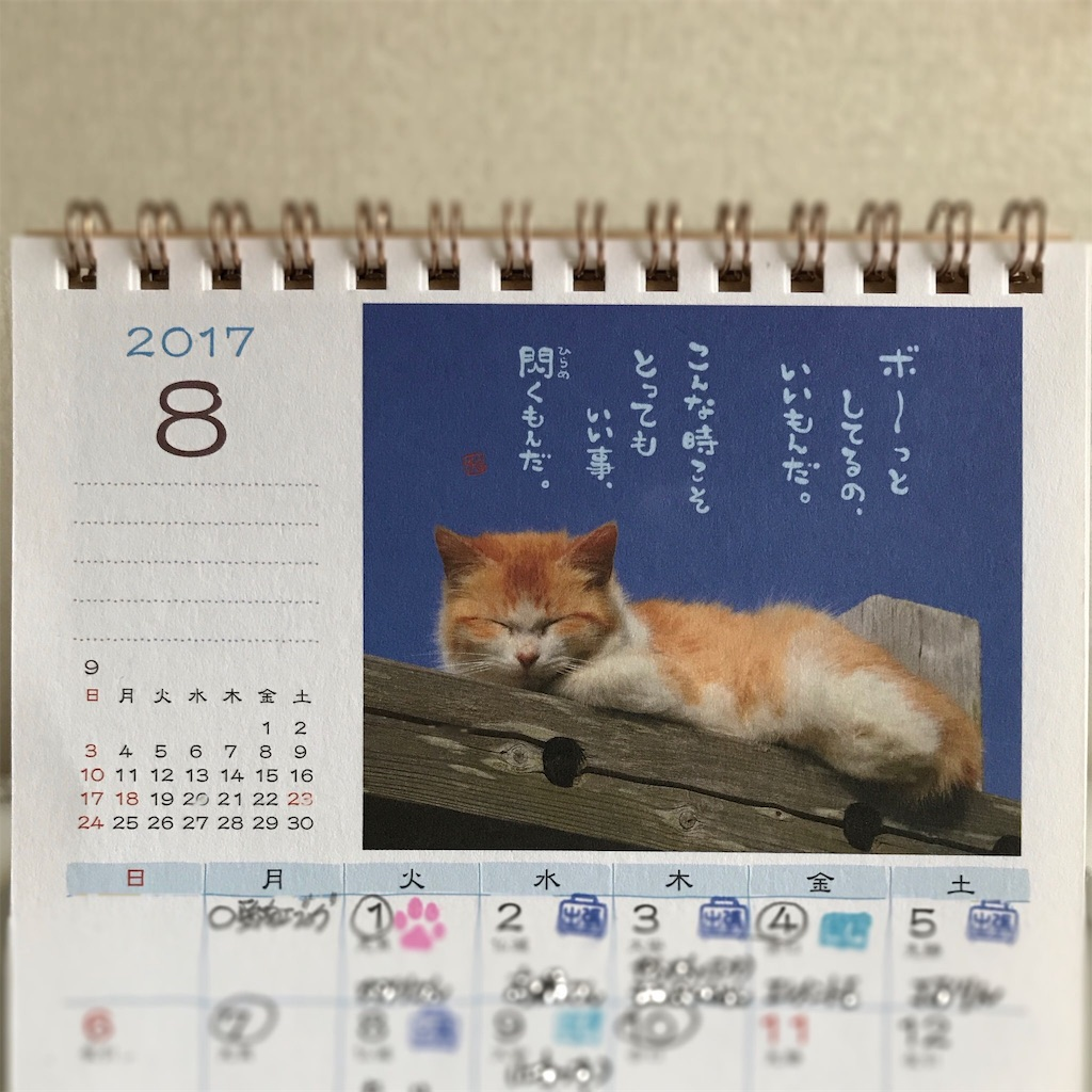 f:id:mika-shimosawa:20170801094712j:image