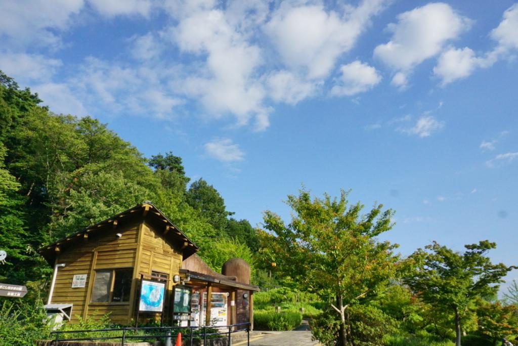 f:id:mika-shimosawa:20170902162235j:plain