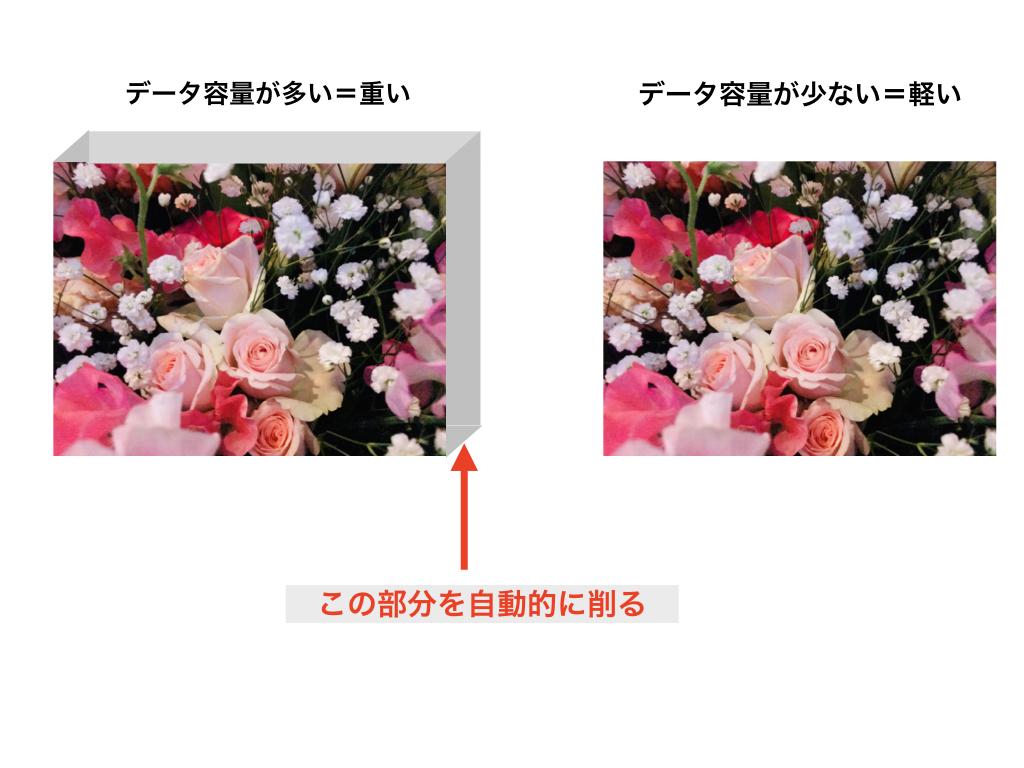 f:id:mika-shimosawa:20190212210546j:plain