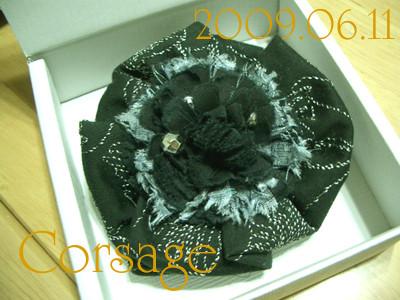 f:id:mika_hayama:20090615024307j:image