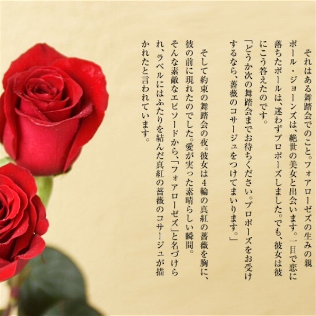 f:id:mika_rose:20170804204217j:image