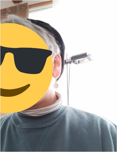 f:id:mikaboisusanroku:20210304145730p:plain