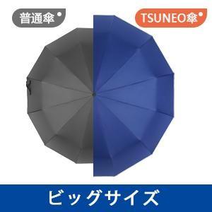 f:id:mikamimayumi0922:20210616075453j:image